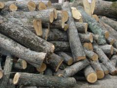 Дрова Луцьк продам дрова в Луцьку ціна доставка