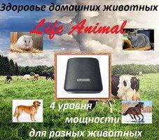 Прибор Life Animal для лечения животных дома.  4 уровня мощности